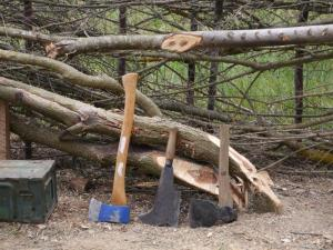 Hedge Laying Workshop