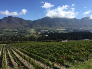 SOLD OUT! S. African Wine Safari: Cape South Coast