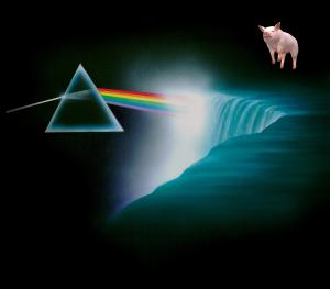 Pink Floyd Niagara: Beyond the Darkside