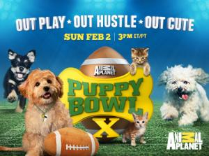 Animal Planet's PUPPY BOWL X