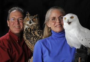 Owls of the World 10 am