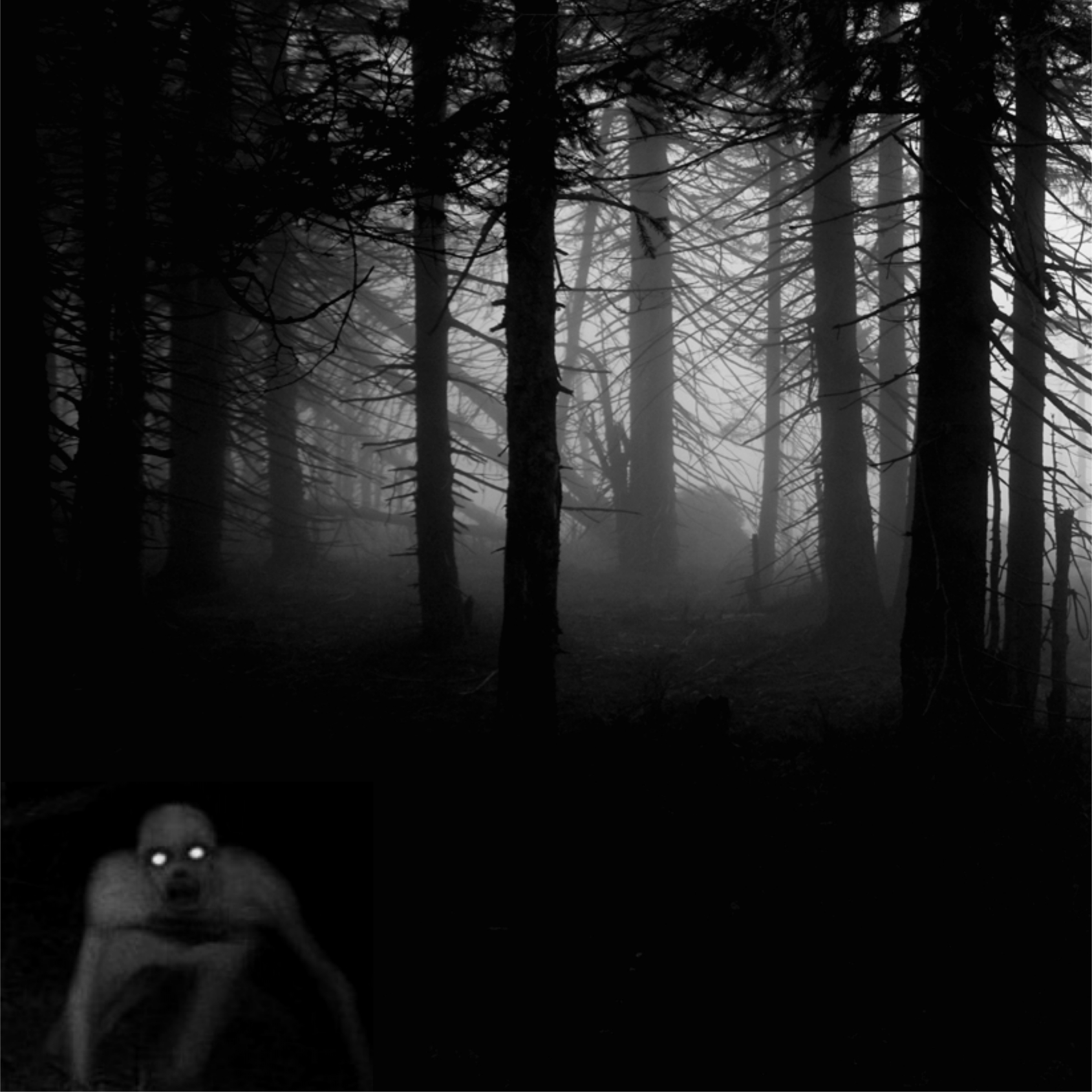 dark scary woods at night scary halloween stories creepy ghost stories for